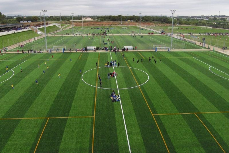 soccer training camps