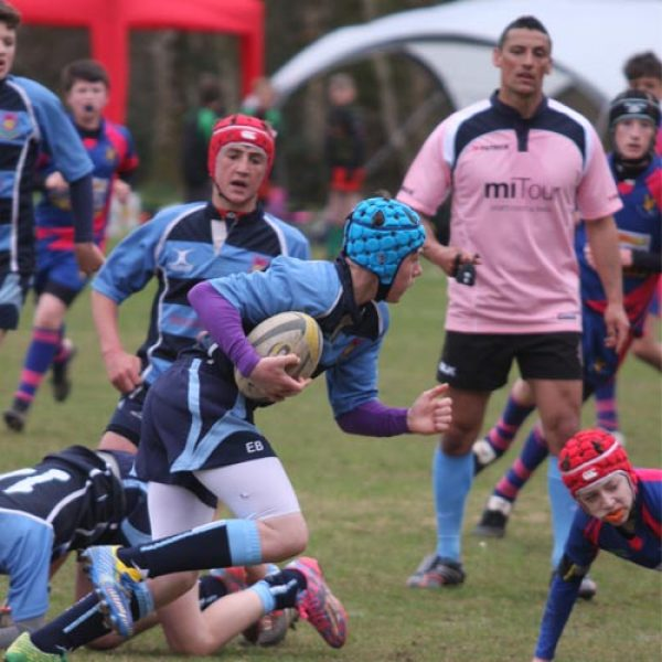 whitland rugby festival action